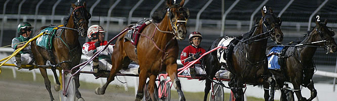 harnessracing
